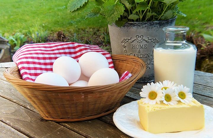 乳製品及蛋白質